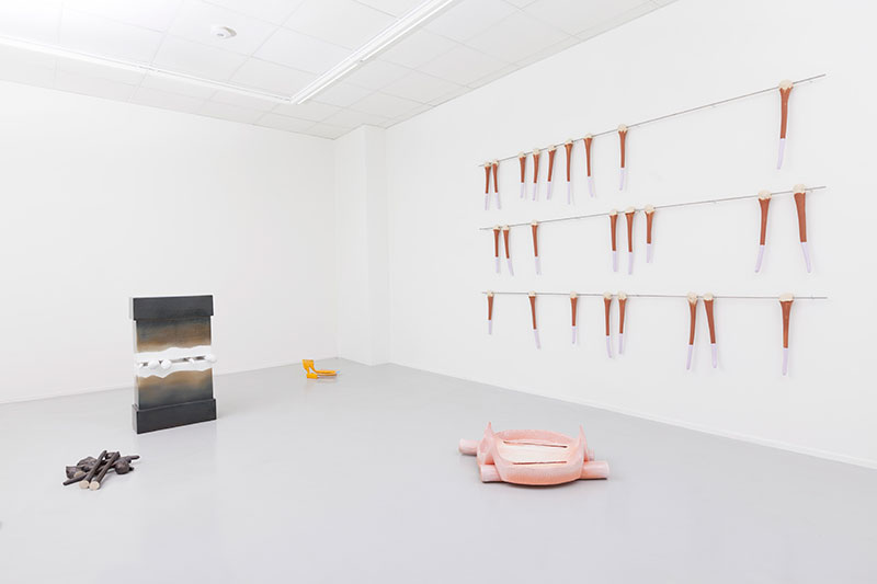 Installation view (Scalp) #2